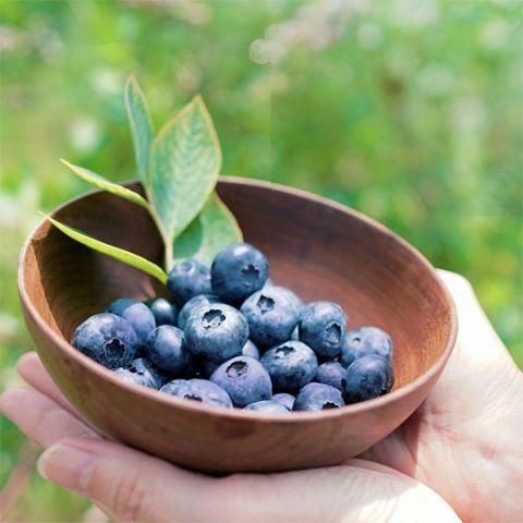 frozen_blueberries_3.jpg