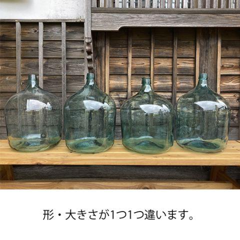 tobin_4.jpg